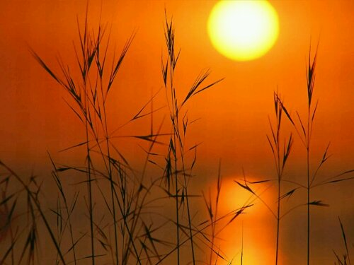 wpid-sunset17.jpg